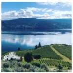 OAK Estate and Veuve Clicquot Collaborate for a Picture-Perfect Picnic