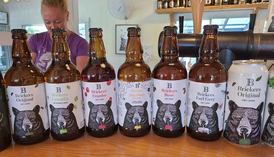 A lineup of Brickers cider bottles and cans