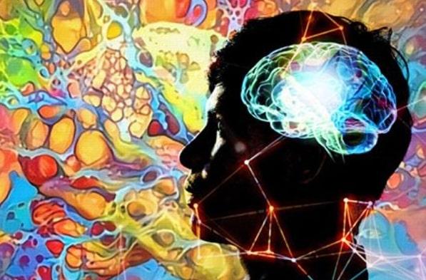 Пять признаков начала старения головного мозга, которым мы не придаем значения