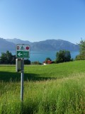 Am Attersee (24)