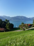 Am Attersee (6)