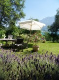 Am Attersee (74)