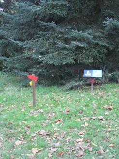Arboretum Chèvreloup (25)