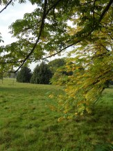 Arboretum Chèvreloup (5)