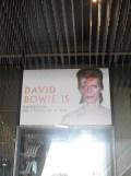 David Bowie (14)
