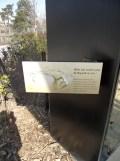 Zoo de Vincennes (117)