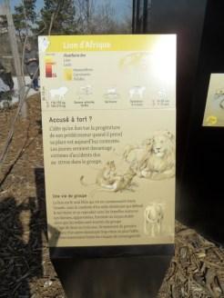 Zoo de Vincennes (118)