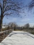 Zoo de Vincennes (13)