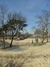Zoo de Vincennes (137)