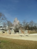 Zoo de Vincennes (173)