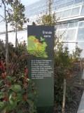Zoo de Vincennes (233)