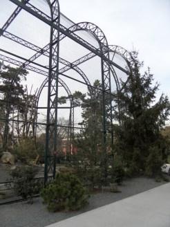 Zoo de Vincennes (392)