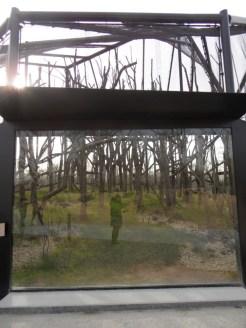 Zoo de Vincennes (419)