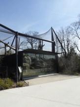 Zoo de Vincennes (72)