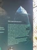 Zoo de Vincennes (95)
