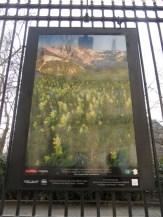 Grilles du Jardin du Luxembourg (9)