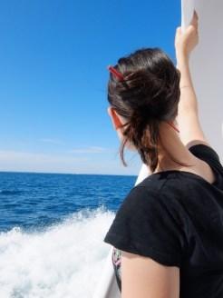 De Belle Île à Vannes en bateau ! (19)