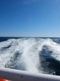 De Belle Île à Vannes en bateau ! (21)