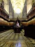 2.Catédral de Sevilla (20)