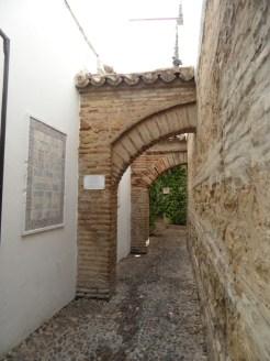 2. Sinagoga (25)