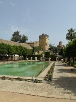 Alcázar de los Reyes Cristianos (77)