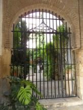 Casa Andalusi (5)
