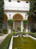 Museo de Bellas Artes (10)