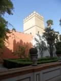 Real Alcázar de Sevilla (272)