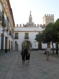 Real Alcázar de Sevilla (294)