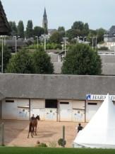 Meeting de Deauville - Plage (156)
