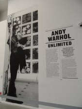 Warhol Unlimited (2)