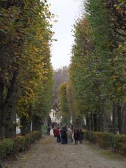 Musée Rodin (207)