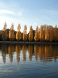 Parc de Sceaux (10)
