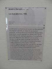 1. Art moderne - Pompidou (25)