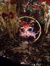 Noël à Vaux le Vicomte (54)