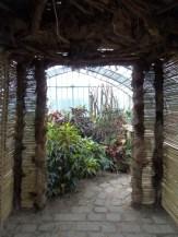 Jardin des serres d'Auteuil (11)