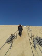 Dune de Pyla (101)
