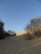 Dune de Pyla (6)