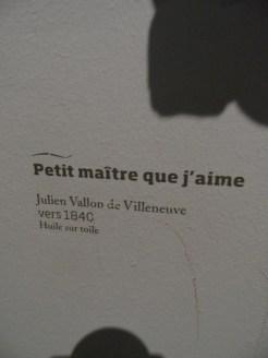 Musée d'Aquitaine (37)