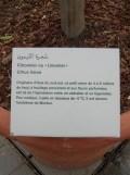2. Jardins d'Orient (152)