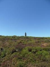 De Cap Fréhel à Fort La Latte (127)