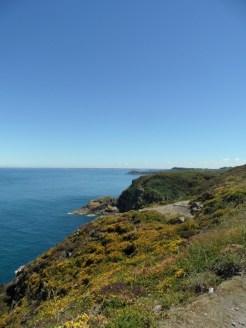 De Cap Fréhel à Fort La Latte (138)