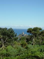 De Cap Fréhel à Fort La Latte (192)