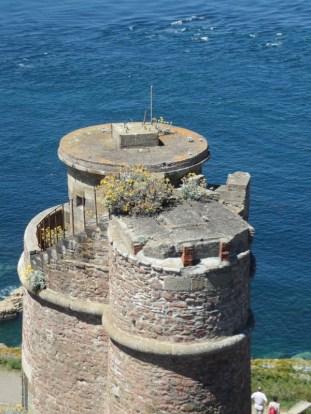De Cap Fréhel à Fort La Latte (37)