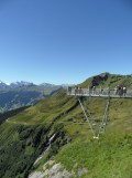 grindelwald-first-111