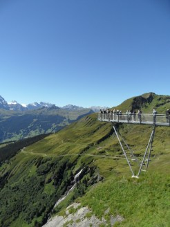 grindelwald-first-113