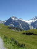 grindelwald-first-172