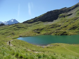 grindelwald-first-181