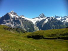 grindelwald-first-203