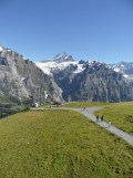 grindelwald-first-234